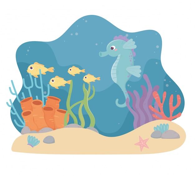 Seahorse vist zeester zand leven koraalrif cartoon onder de zee Premium Vector