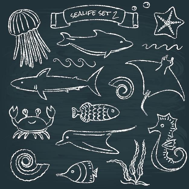 Sealife schoolbord set Premium Vector
