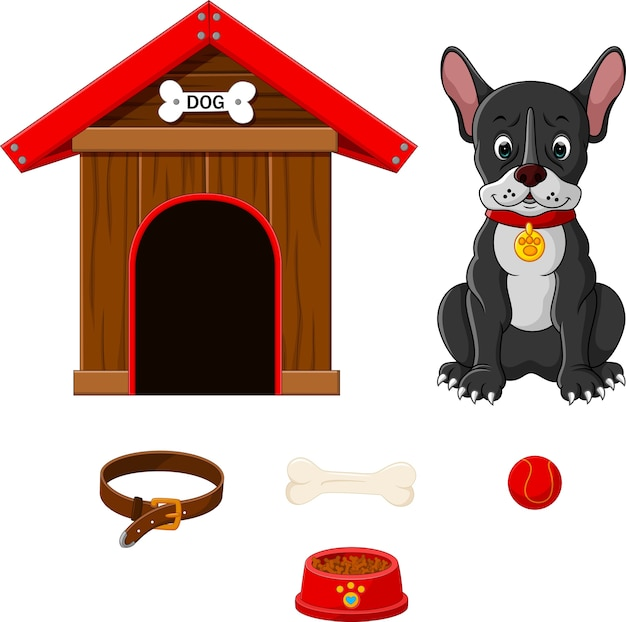Set accessoires voor honden Premium Vector