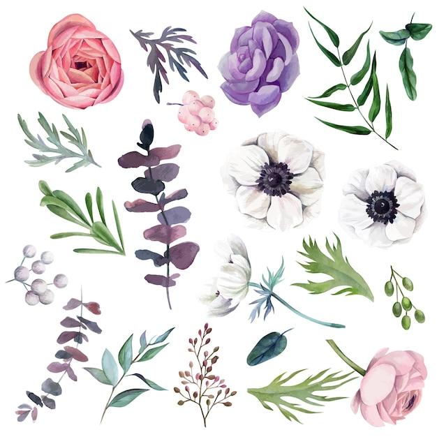 Set aquarel bloemen met bladeren afbeelding ontwerp Premium Vector
