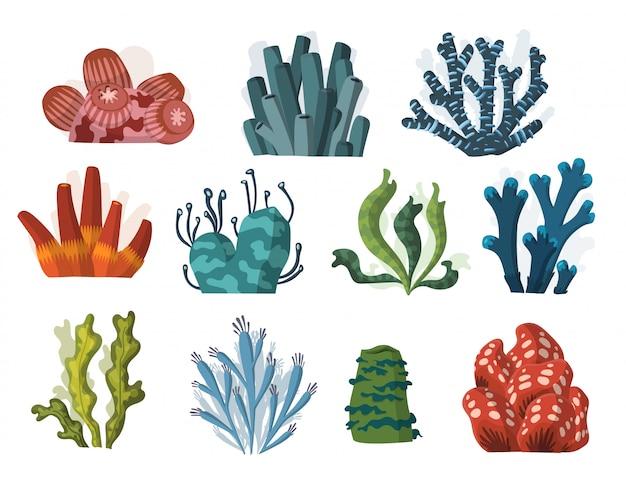 Set cartoon onderwater planten en wezens. Premium Vector