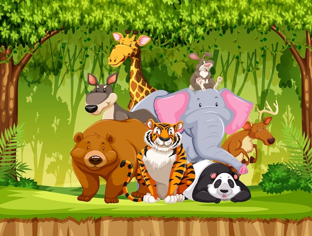 Set dieren in het wild Gratis Vector