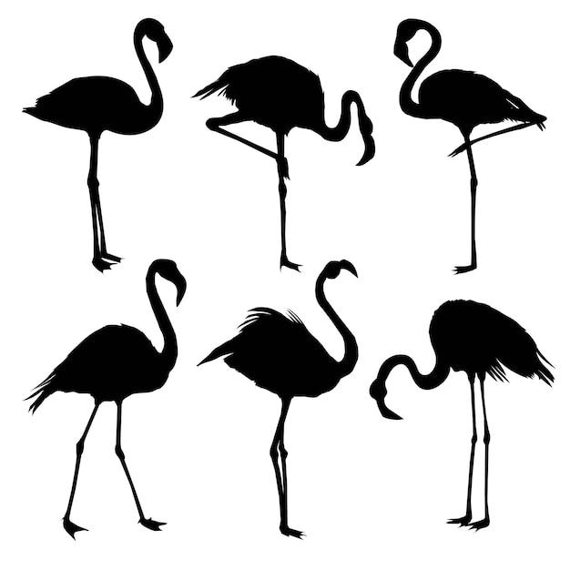 Set flamingo silhouetten Premium Vector