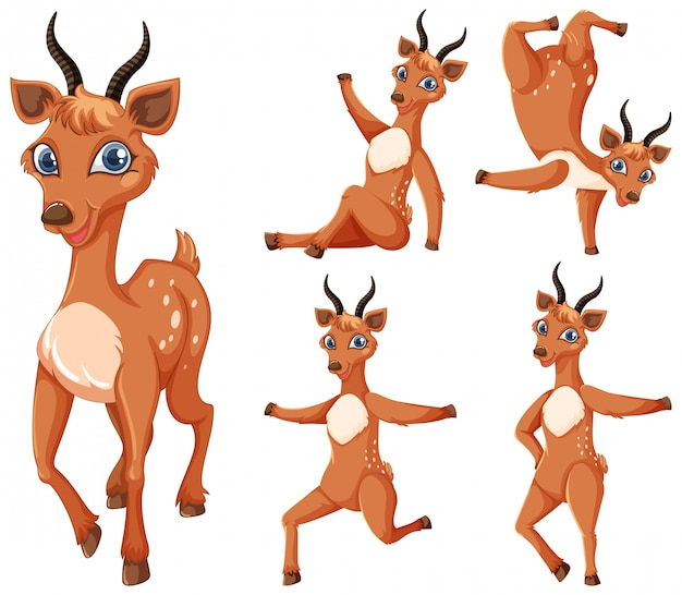 Set gazelle stripfiguur Gratis Vector