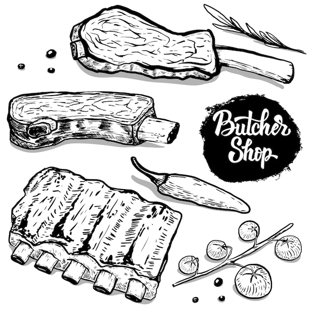 Set hand getrokken rundvleesribben met kruiden. elementen voor poster, menu, flyer. illustratie Premium Vector