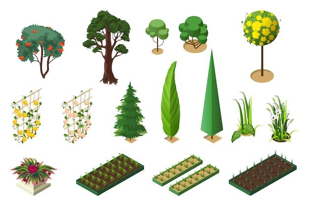 Set isometrisch van planten voor tuin. bomen, bloembedden en groentebedden Premium Vector