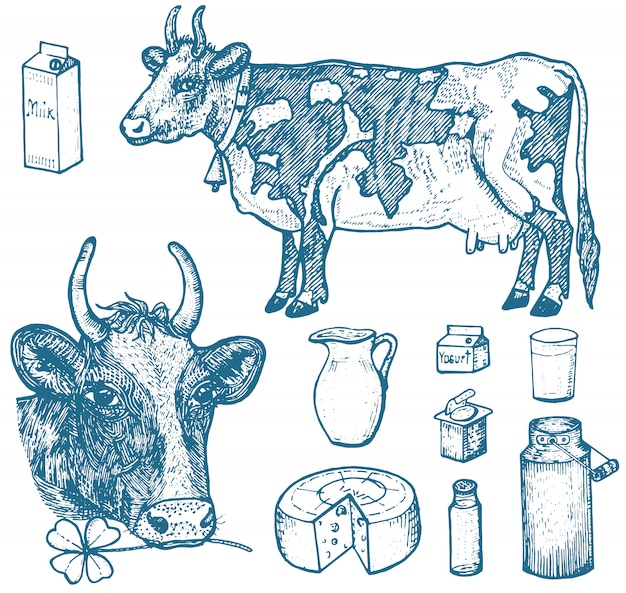 Set melkvoeding, zuivelproducten, yoghurt en kaas, ijs, fles, kruik, boter en opgeklopte milkshake. Premium Vector
