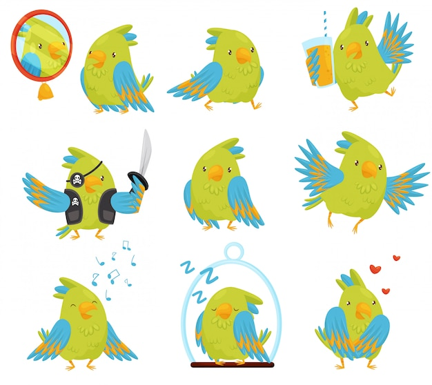 Set papegaai in verschillende situaties. schattige vogel met felgroene en blauwe veren. grappig stripfiguur Premium Vector