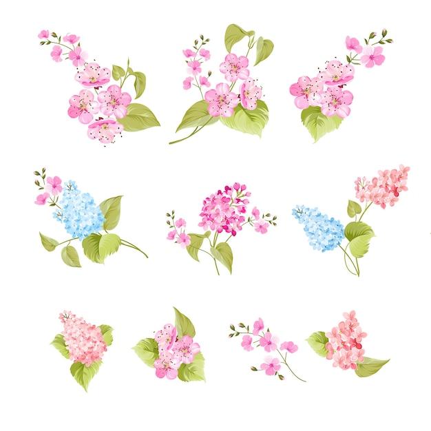Set sakura en lila bloemen elementen Gratis Vector