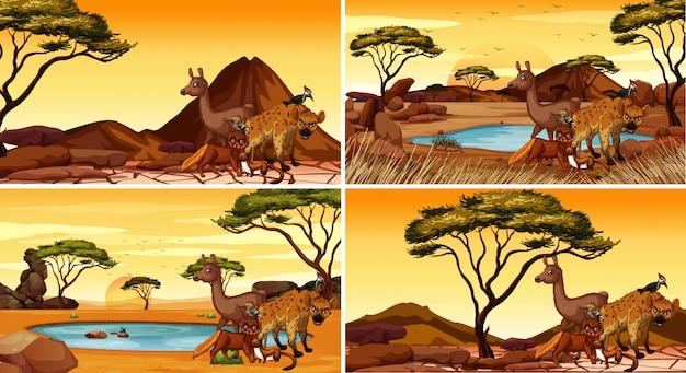 Set scènes met dieren in de woestijn Gratis Vector