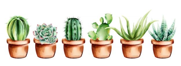 Set van aquarel cactus, aloë vera en bloemen in keramische pot Premium Vector