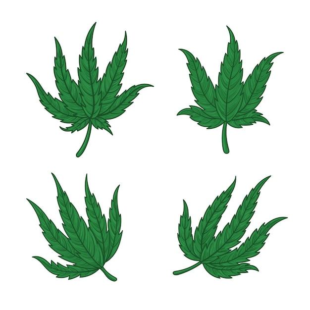 Set van botanische cannabisbladeren Premium Vector