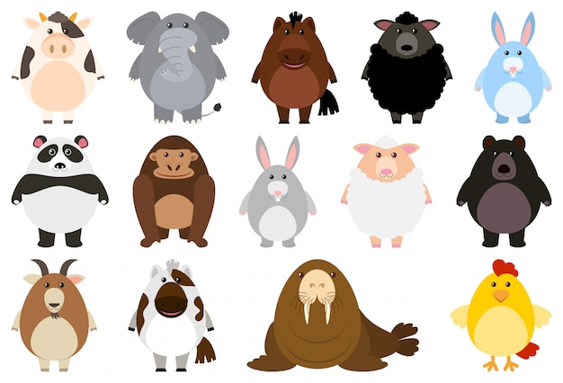 Set van cartoon dieren Gratis Vector