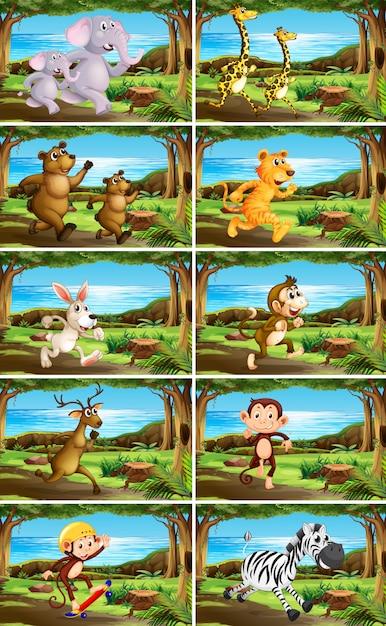 Set van dieren in de natuur scènes Gratis Vector