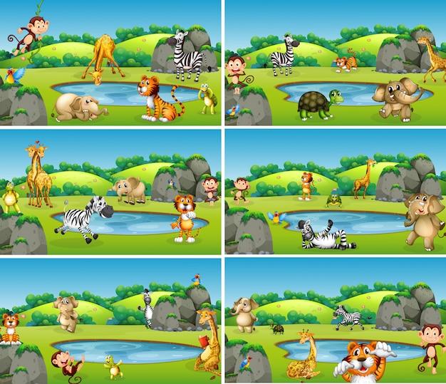 Set van dieren in het wild Gratis Vector