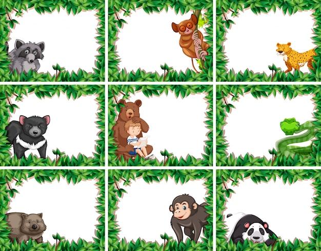Set van dieren in natuurframes Premium Vector