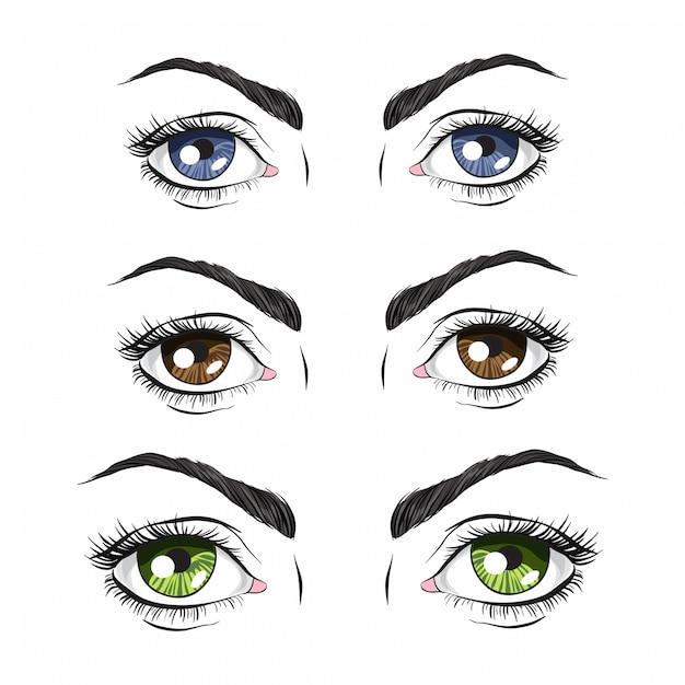 Set van drie paar ogen, groen, blauw en bruin Premium Vector