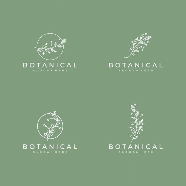 Set van elegante botanische lijntekeningen, symbool voor schoonheid, gezondheid en natuur logo ontwerp Premium Vector