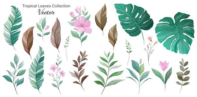 Set van exotische bladeren element vector. bloemenillustratie van monstera, palm, hibiscus en wilde bloemen Premium Vector