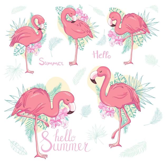 Set van exotische flamingo's geïsoleerd op een witte achtergrond. Premium Vector
