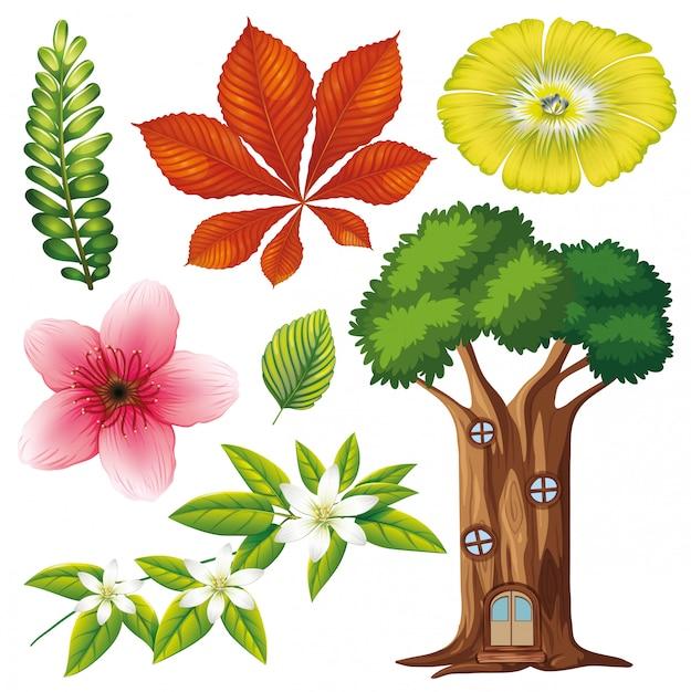 Set van geïsoleerde bloemen en boom Gratis Vector