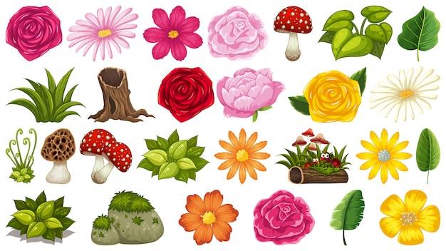 Set van geïsoleerde objecten thema met champignons en bloemen Premium Vector