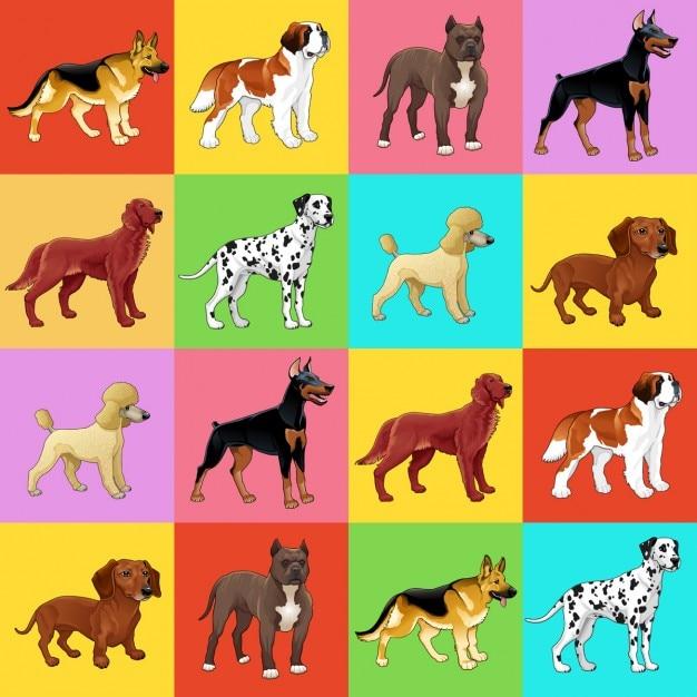 Set van hond met achtergrond voor een mogelijke verpakkingen of grafische Gratis Vector