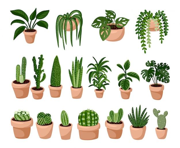Set van hygge ingemaakte vetplanten, cosy lagom scandinavische stijlcollectie Premium Vector