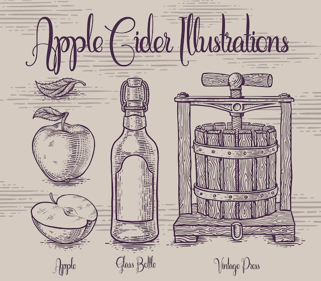 Set van illustraties met apple cidre Premium Vector