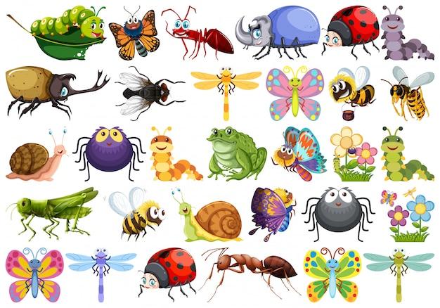 Set van insect karakter Gratis Vector