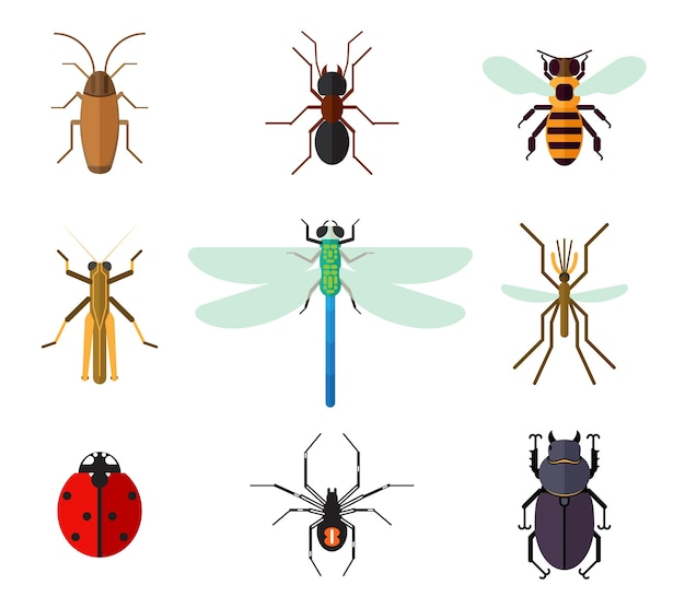 Set van insecten in vlakke stijl. Gratis Vector