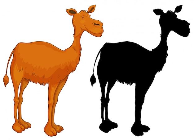Set van kameelkarakter Gratis Vector