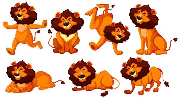 Set van leeuw stripfiguur Gratis Vector
