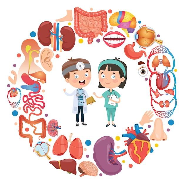 Set van menselijke organen met stripfiguren Premium Vector