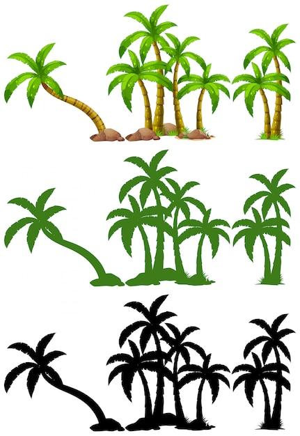 Set van palmboom Gratis Vector