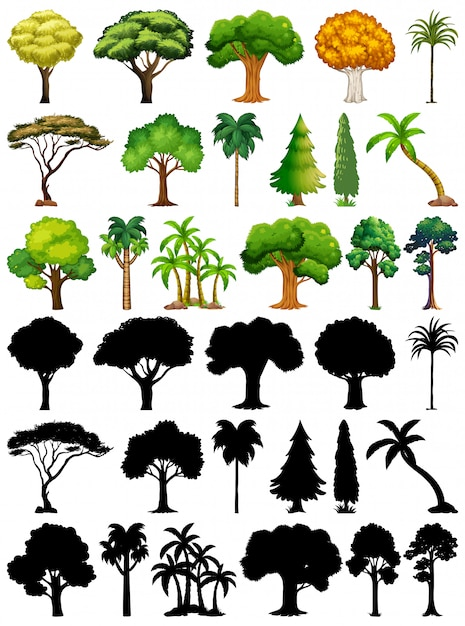 Set van plant en boom met zijn silhouet Gratis Vector