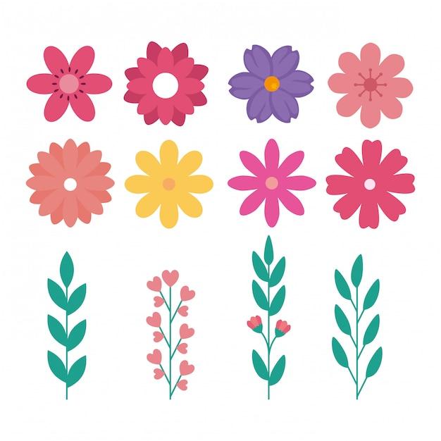 Set van schattige bloemen met takken en bladeren naturals Gratis Vector