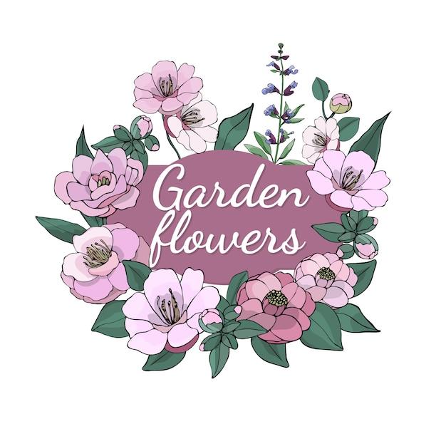 Set van seizoensgebonden prachtige tuin bloemen. Premium Vector
