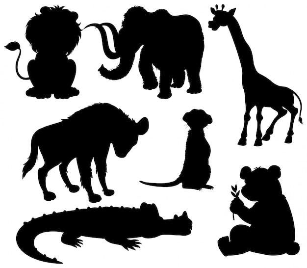 Set van silhouet wilde dieren Gratis Vector