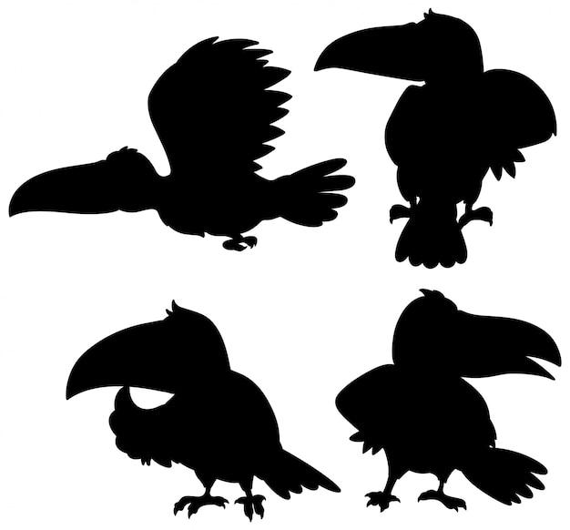 Set van toekan silhouet Gratis Vector