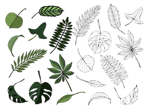 Set van tropische bladeren Premium Vector