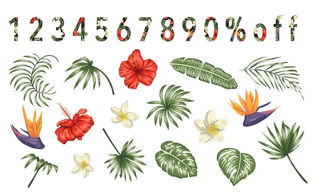 Set van tropische bloemen en bladeren geïsoleerd op een witte achtergrond. heldere realistische verzameling exotische ontwerpelementen. nummers gevuld met tropic patroon. Premium Vector