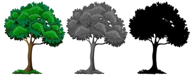 Set van verschillende boom ontwerp Gratis Vector