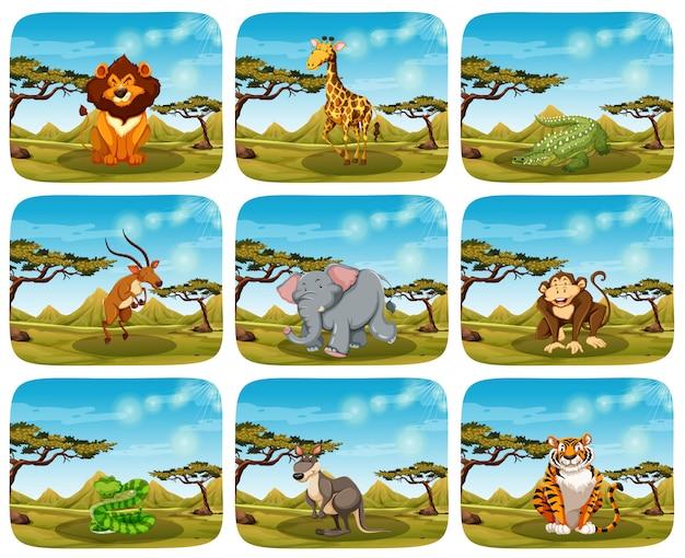 Set van verschillende dieren in scènes Gratis Vector