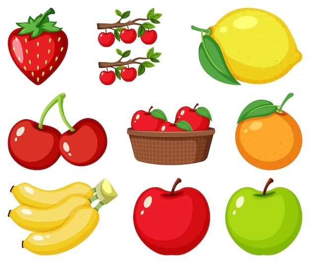 Set van verschillende soorten fruit Premium Vector