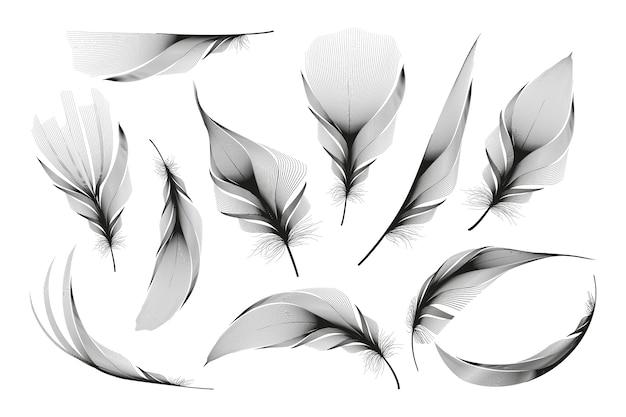Set van verschillende vallende pluizige dik veren op een witte achtergrond Premium Vector