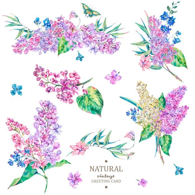 Set van vintage bloemen vector boeket van lila Premium Vector