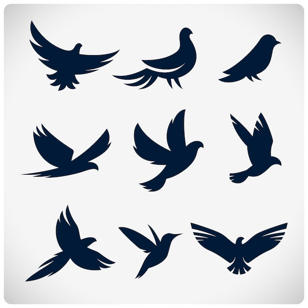 Set van vogels silhouetten Premium Vector