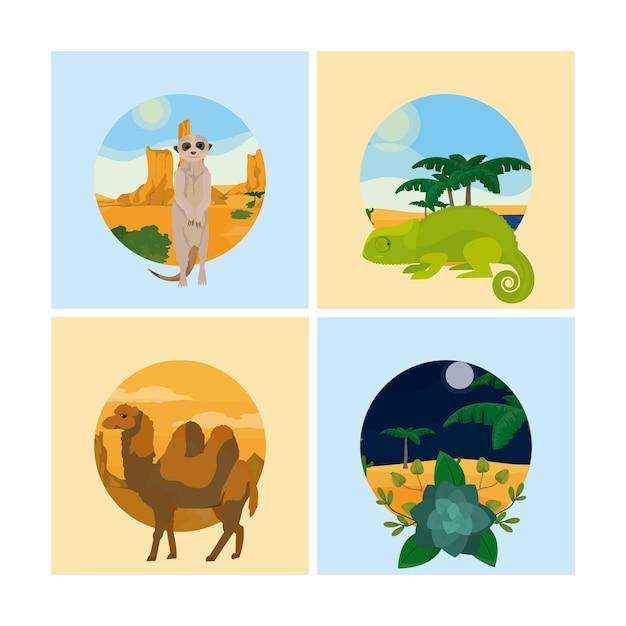Set van woestijndieren Premium Vector