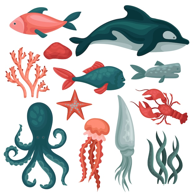 Set van zeedieren en objecten. vissen, kwallen, rode krab, inktvis, octopus, zeester, zeewier en stenen Premium Vector